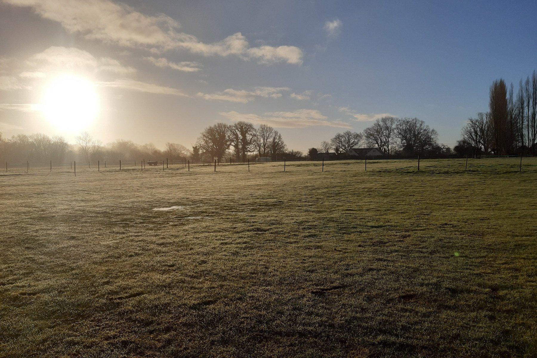 farm-fields-holt-wimborne-shaftsbury